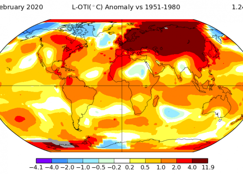 A surface temperature anomaly or trend map.