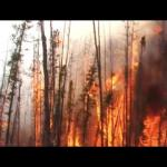 Wildfires in Colorado with Megan Cattau