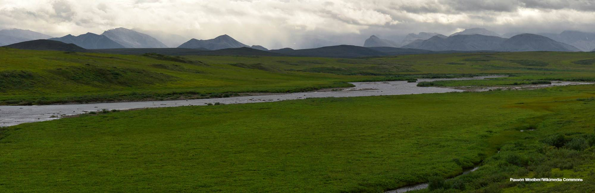tundra and river in alaska