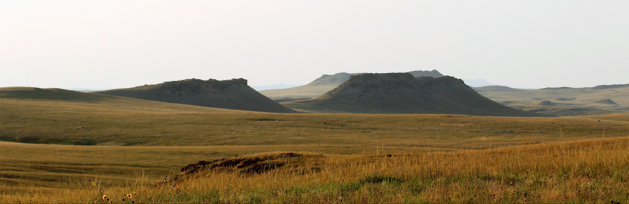 Buttes on the landscape across Thunder Basin National Grassland. Photo by U.S. Department of Agriculture