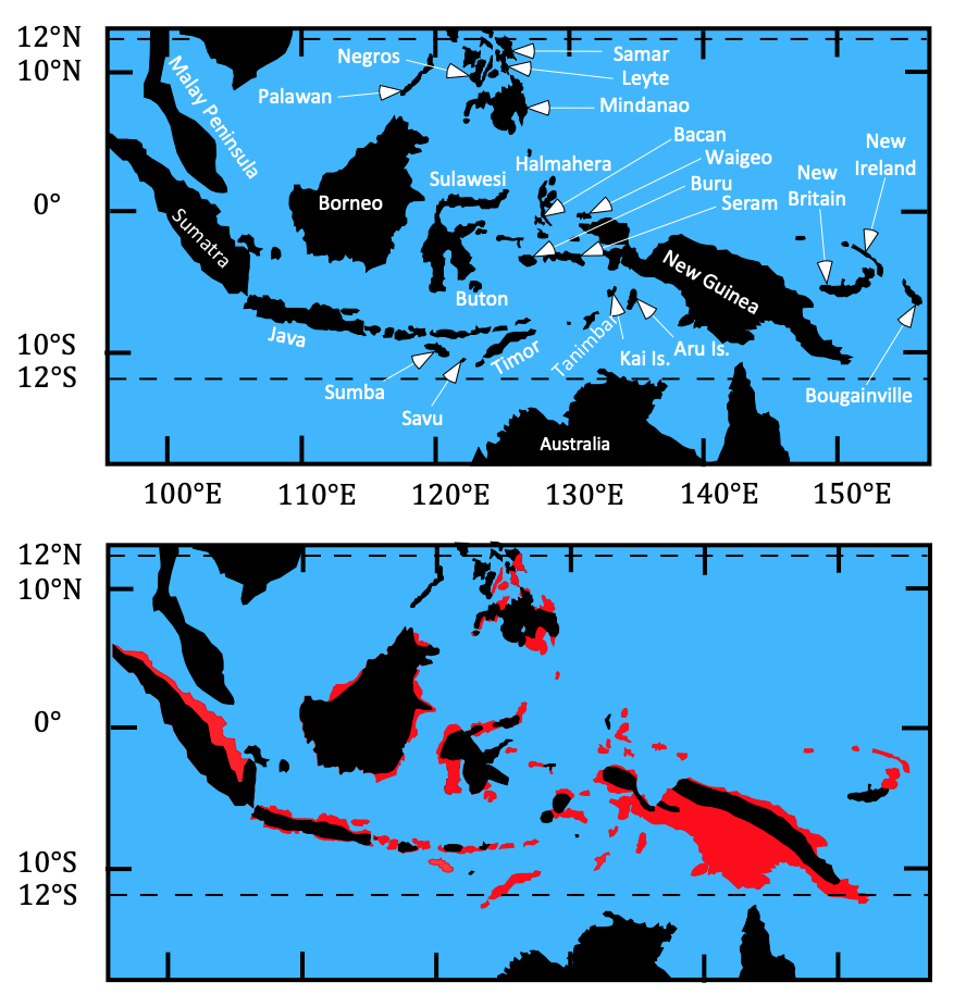 Maps of the Indonesian region showing present-day(top) emergent regions (black) and (bottom) emergent regions 5 million years ago (black) and land that today is emergent, but was submerged (red).