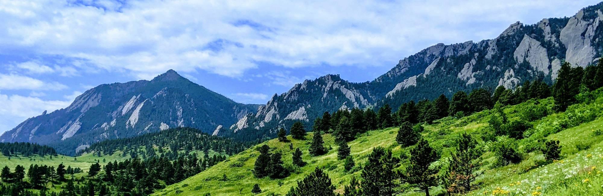sunny skies,  lush grass, mountain backdrop