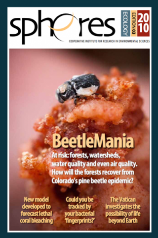 CIRES SPERES Magazine | Beetlemania