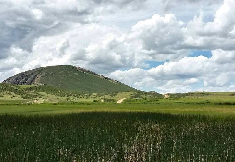 Photo of wetlands, grasslands and mountain shrubs in Wyoming