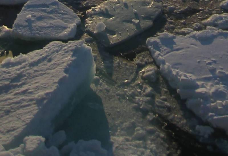 Sea ice / NOAA